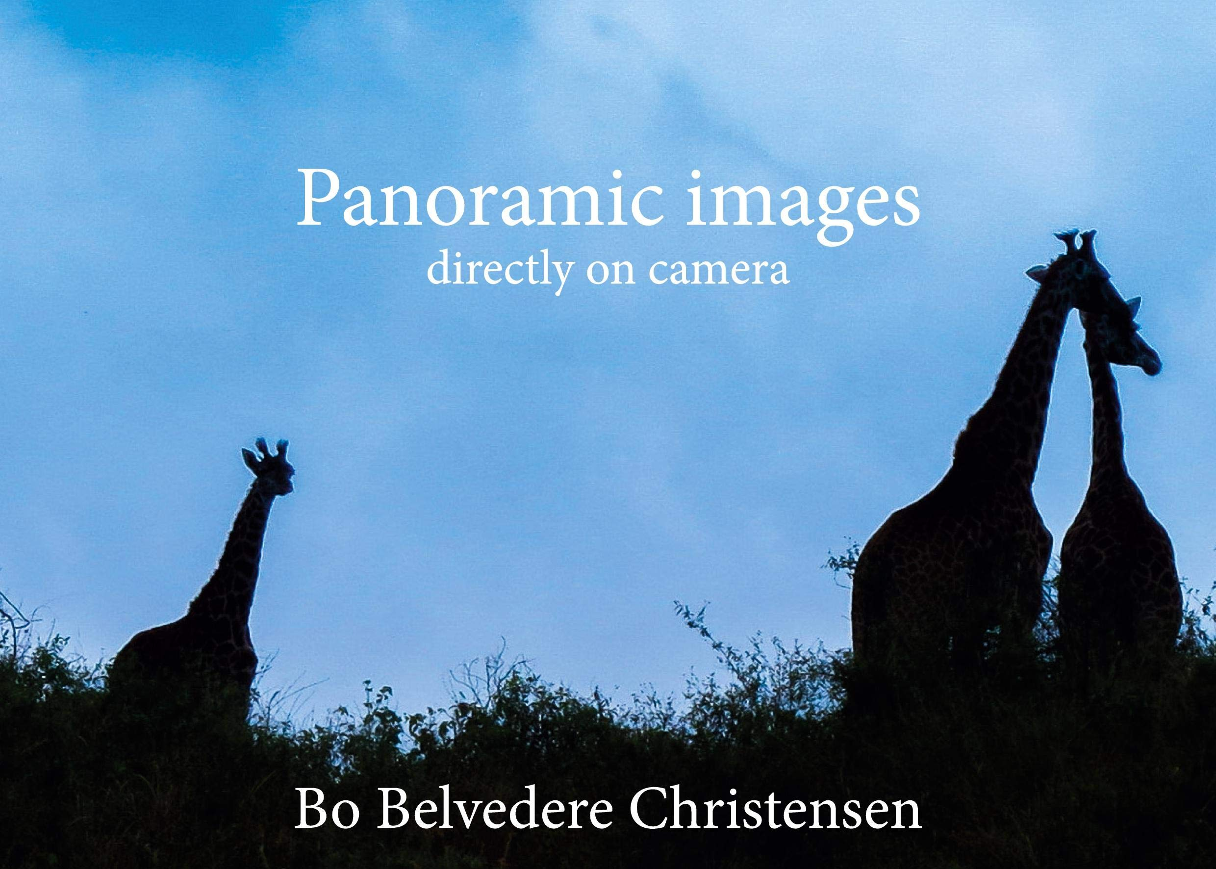 New book: Panoramic Images